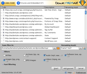 firefox_downthemall06