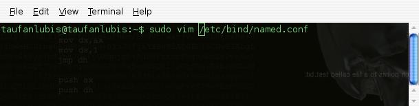 7 Easy Steps Installation DNS server in Ubuntu Jaunty