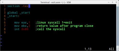 exit-asm